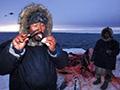 因纽特人生吃独角鲸