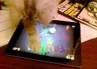 猫咪也会玩水果忍者