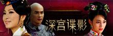 中国版碟中碟《深宫谍影》